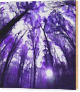 Colorful Trees X Wood Print