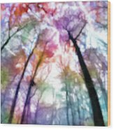 Colorful Trees Xiii Wood Print