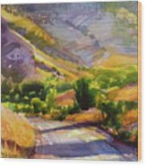 Columbia County Backroads Wood Print
