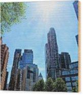 Columbus Circle At Mid Day Wood Print