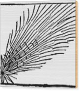 Comet Of 684 Halley, 1493 Wood Print