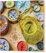 Compass And Compass Rose Wood Print