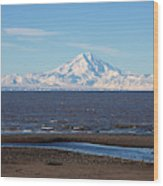 Cook Inlet And The Alaska Range From Ninilchik Wood Print