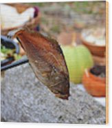 Cooking Fish At Camp Wood Print