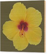 Cool Bloom Wood Print