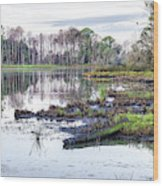 Coosaw - Early Morning Rice Field Wood Print