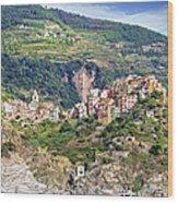 Corniglia View Wood Print