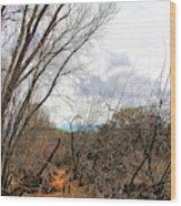 Cottonwood Arizona Jail Trail Trees Path Sky Clouds 5229 Wood Print