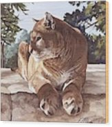 Cougar Outlook Wood Print