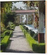 Painted Texture Courtyard Landscape Getty Villa California  Wood Print
