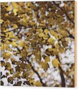 Cozy Fall Day Wood Print