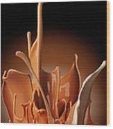 Creme Brulee Splash Wood Print