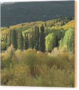 Crested Butte Colorado Fall Colors Panorama - 1 Wood Print