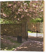 Crichton Church Entrance Gate And Tree In Pink Bloom Wood Print