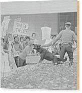 Crowd Protesting President Nixon Wood Print