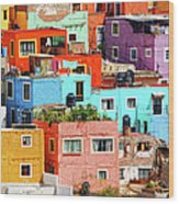 Cultural Colonial Cities Of Mexico Wood Print
