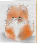 Cute Fluffy Persian Cat Wood Print