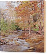 Cypress Creek As It Exits Blue Hole Regional Park In Wimberley, Hays County Texas Hill Country Wood Print
