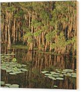 Cypress In The Lake Wood Print