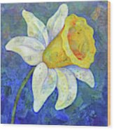 Daffodil Festival I Wood Print
