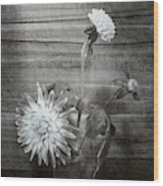 Dahlia Grouping Wood Print