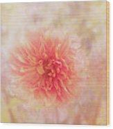 Dahlia Light Wood Print