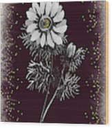Daisy Sparkle Wood Print