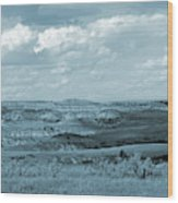 Dakota Grassland Shadows Wood Print