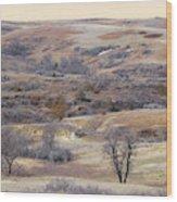 Dakota Prairie Slope Reverie Wood Print