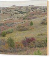 Dakota West Prairie Treasure Wood Print