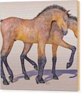 Darling Foal Pair Wood Print
