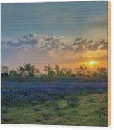 Daybreak In The Land Of Bluebonnets Wood Print