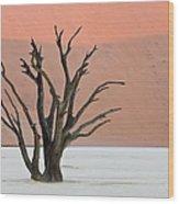 Dead Vlei Sossusvlei Africa Namibia Wood Print
