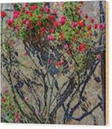 della Rocca Rose Wood Print