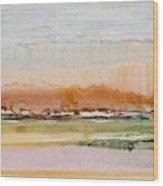 Desert Grasslands    Wood Print
