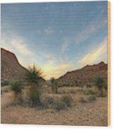 Desert Hike Wood Print