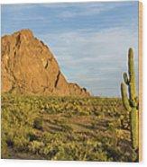 Desert Mountain Cactus Classic Wood Print