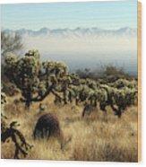 Desert Winter 1 Wood Print
