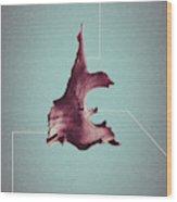 Diagesis - Abstract Geometric Bone Art Wood Print