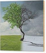 Digital Illustration Of Half Winter Wood Print