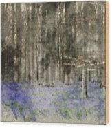 Digital Watercolor Painting Of Stunning Landscape Of Bluebell Fo Wood Print