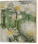 Digital Watercolor Painting Of Wild Daisy Flowers In Wildflower  Wood Print