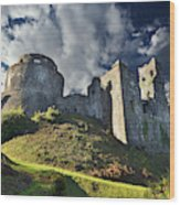 Dinefwr Castle 2 Wood Print