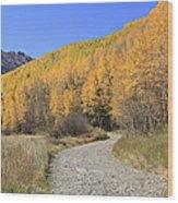 Dirt Road In The Elk Mountains, Colorado Wood Print