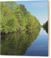 Dismal Swamp Canal In Spring Wood Print