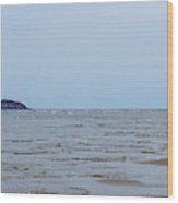 Distant Seguin Island Wood Print