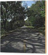 Dixie Highway In Micanopy Florida Wood Print