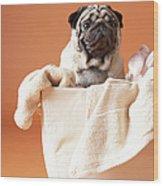 Dog In Basket Wood Print