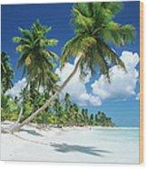 Dominican Republic, Saona Island, Palm Wood Print