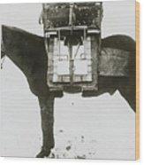 Donkey Carrying Portable Telegraph Wood Print